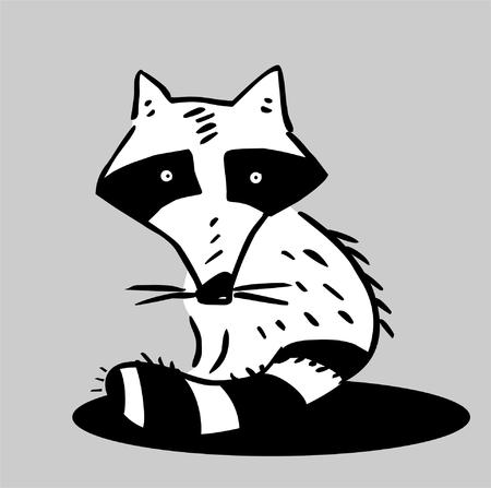 tail: Funny raccoon