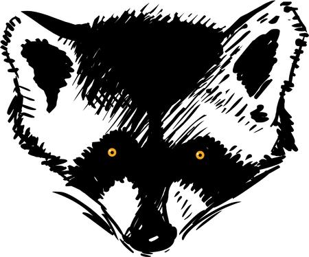 fart: Raccoon head vector illustration