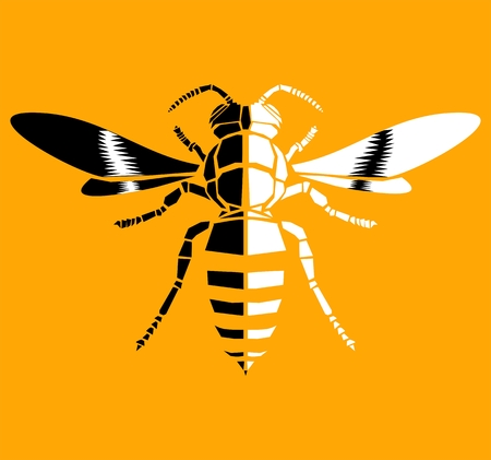 Wasp, vector icon Illustration