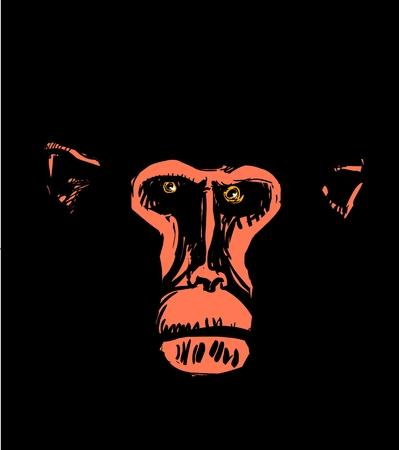 Monkey head vector illustration