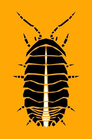 palomena: Bug, illustration