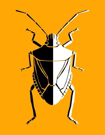 shield bug: Bug, illustration