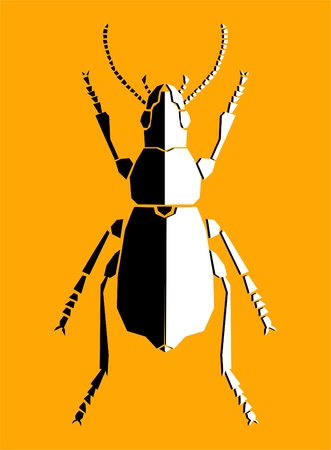prasina: Bug, illustration
