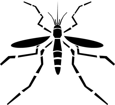 mosquitoe: Mosquito vector icon