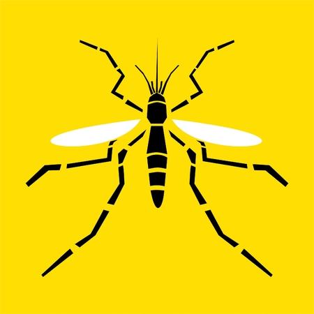 stinging: Mosquito vector illustration Illustration