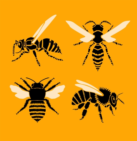 Bee and wasp vector illustration Illustration