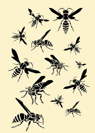 wasps: Flying wasps Illustration