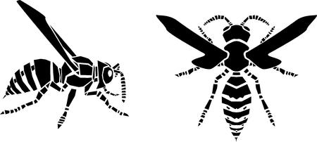 Wasp vector illustration