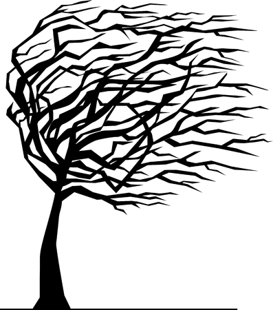 Silhouette of a tree by the wind