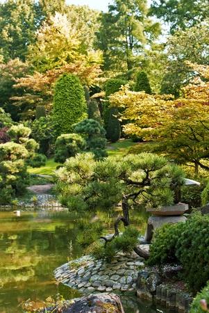 이른 가을에 일본 정원, 햇살과 신선한