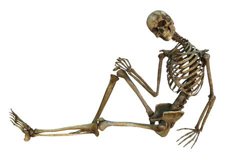 흰색 배경에 고립 된 오래 된 인간의 앉아 하 고 웃는 뼈대의 3D 디지털 렌더링 스톡 콘텐츠