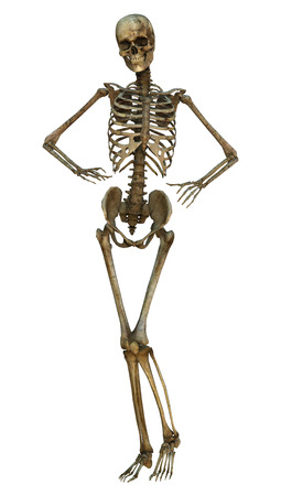 3d digital render of an old human standing skeleton isolated on white