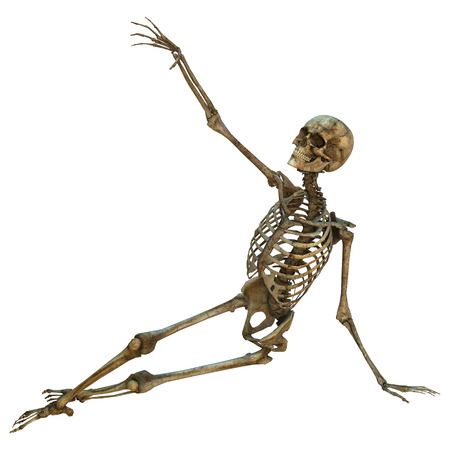 3d digital render of an old human skeleton isolated on white