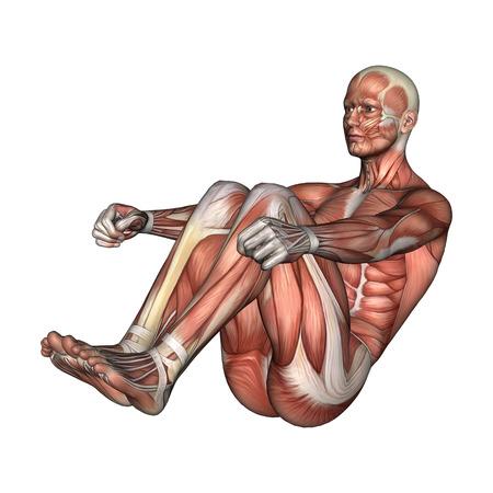 3D-Darstellung Von Einem Digitalen Exersizing Männlichen Anatomie ...