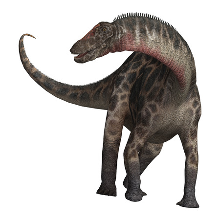 3D digital render of  a curious dinosaur Dicraeosaurus isolated on white background
