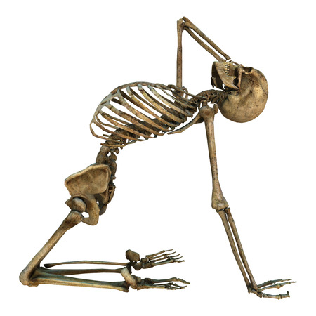 3D digital render of a human skeleton doing sport isolated on white background