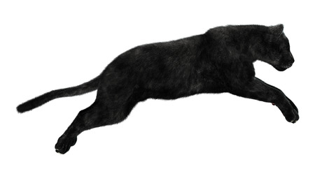 3D digital render of a jumping black panther isolated on white background