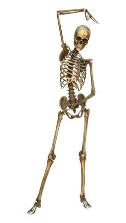 3D digital render of a human skeleton dancing isolated on white background 版權商用圖片