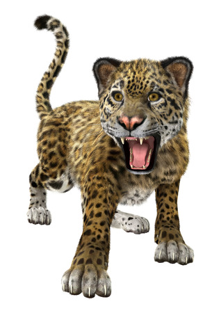 3D digital render of a big cat jaguar isolated on white background