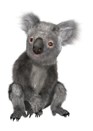 3D digital render of a cute koala sitting isolated on white background 版權商用圖片