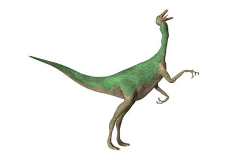 3D rendering of a dinosaur Gallimimus  isolated on white background