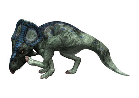 3D rendering of a dinosaur Protoceratops isolated on white background Stock Photo