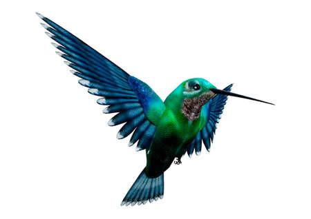 Het 3D teruggeven van een zoemende vogel die op witte achtergrond wordt geïsoleerd