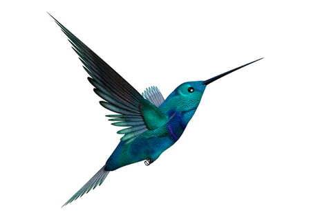 3D rendering of a hummingbird isolated on white background