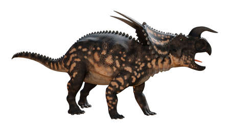 3D rendering of a dinosaur Einiosaurus isolated on white background