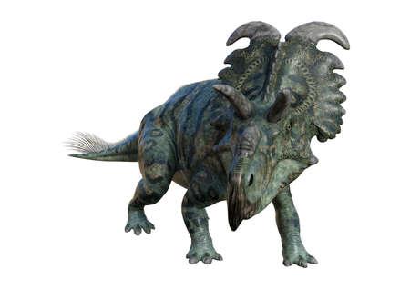 3D rendu d'un dinosaure Albertaceratops isolé sur fond blanc Banque d'images - 86854757