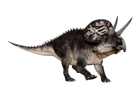 3D rendering of a dinosaur Zuniceratops isolated on white background Stok Fotoğraf