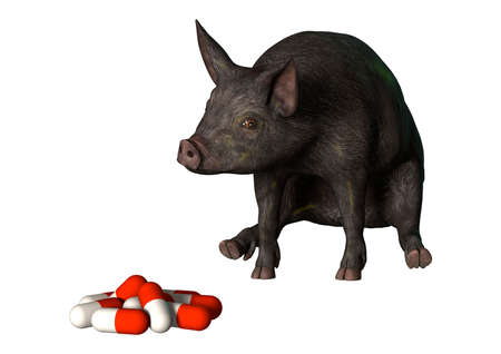 3D rendering of a dark pig looking at pills isolated on white background 写真素材
