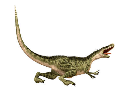 3D rendering of a dinosaur Monolophosaurus isolated on white background Stock Photo