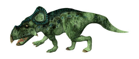 3D rendering of a dinosaur Protoceratops isolated on white background Banco de Imagens