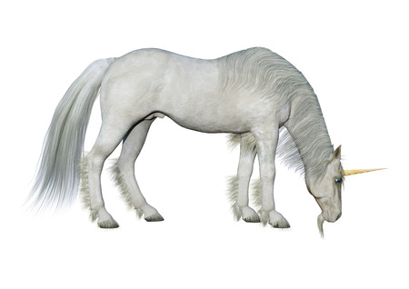 3D rendering of a fairy tale white unicorn isolated on white background