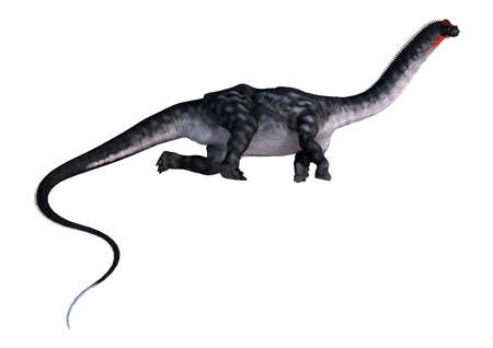 3D rendering of a dinosaur Apatosaurus isolated on white background Stock Photo
