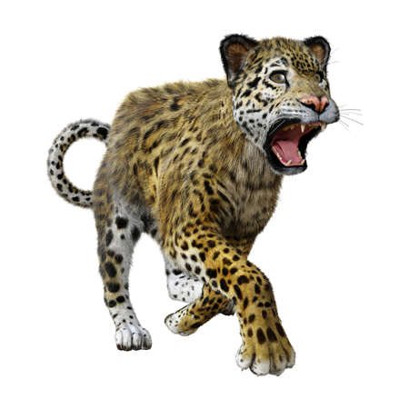 3D rendering of a big cat jaguar isolated on white background