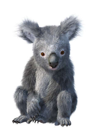 3D rendering of a cute koala bear isolated on white background