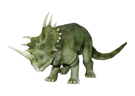 3D rendering of a dinosaur Styracosaurus or spiked lizard, a genus of herbivorous ceratopsian dinosaur from the Cretaceous Period (Campanian stage) isolated on white backround