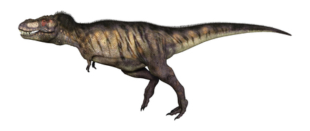 3D Illustration of a dinosaur tyrannosaurus isolated on white background