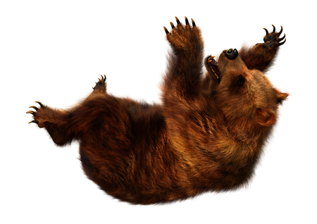 3D rendering of a brown bear isolated on white background Stock Photo