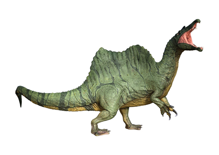 3D rendering of a dinosaur Spinosaurus isolated on white background