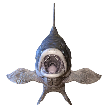 3D rendering of a Mawsonia, an extinct genus of prehistoric coelacanth fish isolated on white background