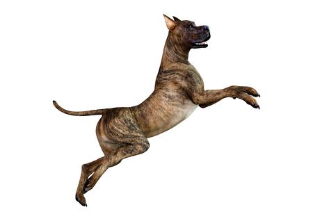 Representación 3D de un perro gran danés atigrado aislado sobre fondo blanco.
