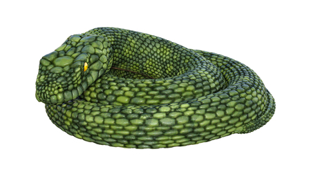 3D rendering of a green giant fantasy snake isolated on white background
