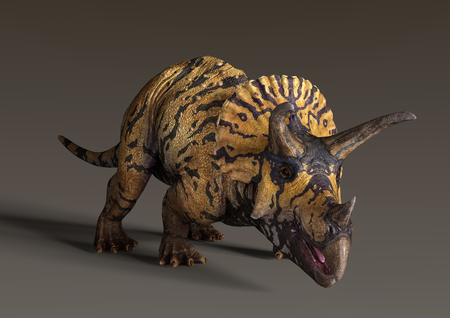 3D rendering of a dinosaur Triceratops  on a dark background