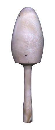 3D illustration of a magic mushroom isolated on white background