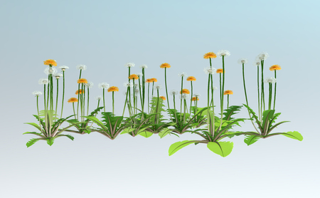 3D rendering of dandelion flowers isolated on light blue background