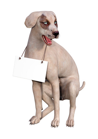 3D rendering of a crossbreed dog with a blank sign isolated on white background