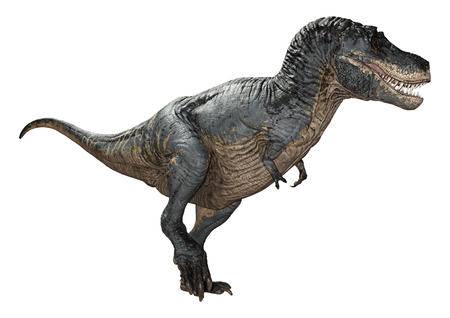 3D rendering of a dinosaur Tyrannosaurus Rex isolated on white background Imagens